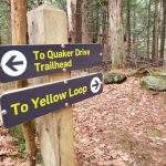 Winter hike at Brooks Woodland Preserve in Petersham provides relief from pandemic fatigue