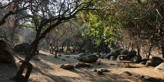 Sequoia, Kings Canyon Requiring Camping Reservations This Year